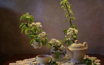 цветение, ветки, чашка, чай, чайник, натюрморт, груша