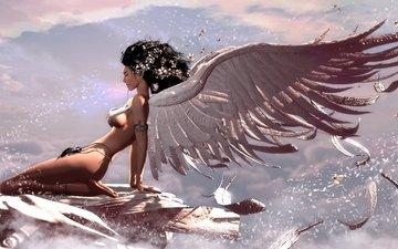 крылья, ангел, ню