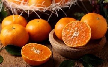 плоды, мандарины, цитрусы