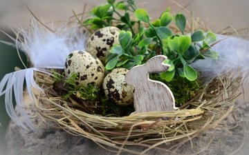 leaves, branches, moss, feathers, rabbit, easter, eggs, holiday, socket, figure, decor
