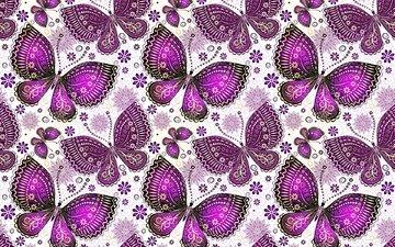 узор, крылья, бабочки