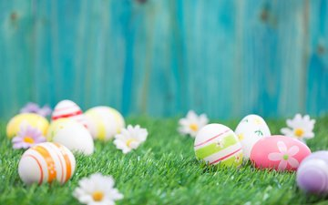 flowers, grass, the fence, board, chamomile, easter, eggs, holiday