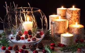 свечи, ветки, шишки, композиция, клюква