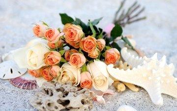 розы, букет, морская звезда