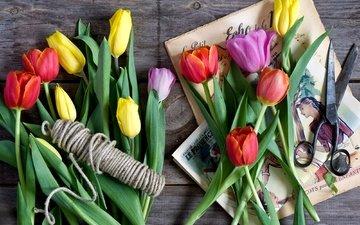 весна, тюльпаны, картинки, ножницы, бечевка