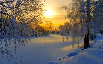 снег, закат, зима, деревь, валлпапер