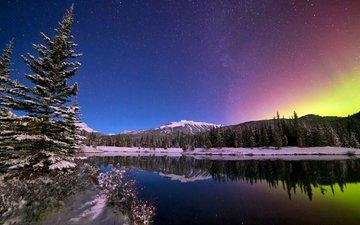 зима, ели, горное озеро, ландшафт, зимний лес, валлпапер