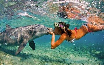 девушка, поцелуй, дельфин, валлпапер, gевочка, воздушны поцелуй