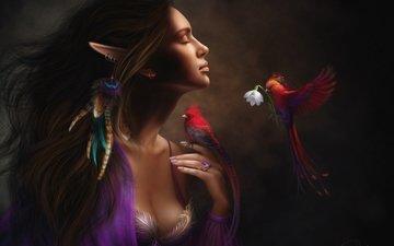 girl, mood, flower, birds, feathers, elf