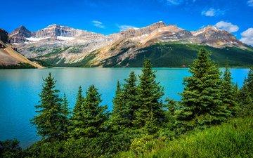 горное озеро, деревь, ландшафт, валлпапер