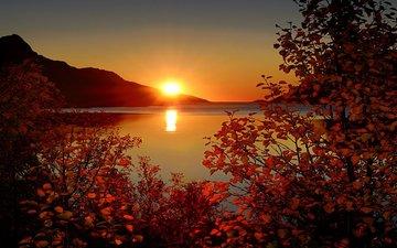 закат, горное озеро, деревь, ландшафт, валлпапер