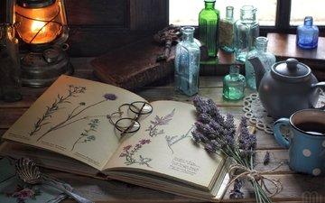 flowers, lavender, vintage, glasses, lamp, drawings, bottle, book, still life, herbarium