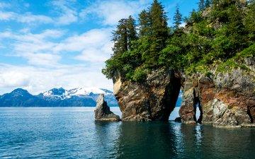 деревья, горы, скалы, камни, берег, сша, аляска, фьорды, kenai fjords national park, кенай-фьордс