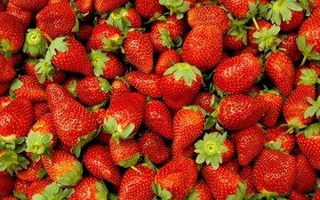 клубника, ягоды, берри