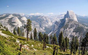 деревья, горы, скалы, склон, йосемитский национальный парк, сьерра-невада, glacier point, калифорнийская, долина йосемити