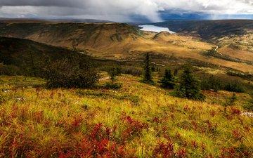 озеро, холмы, панорама, сша, аляска, национальный парк денали
