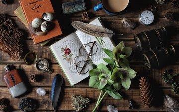 flowers, glasses, things, watch, cup, bump, eggs, cell, compass, book, pen, binoculars, hellebore, heleborus