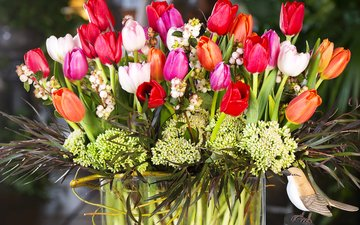 букет, тюльпаны, тульпаны
