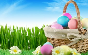 the sky, flowers, grass, nature, easter, eggs, holiday