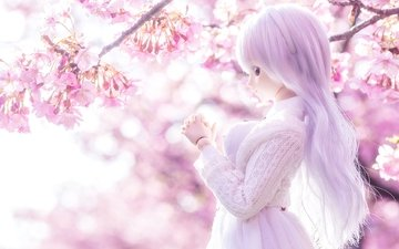 light, mood, doll, spring, sakura
