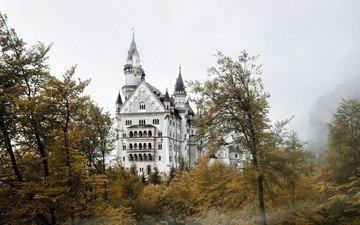 города, замок, германия, нойшванштайн, с серыми, баварии, дерево
