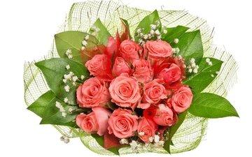 розы, букет, 8 марта, роз, букеты