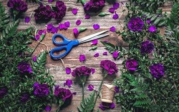 листья, лепестки, папоротник, ножницы, нитки, гвоздики, барвинок