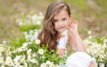 цветы, лето, взгляд, ребенок, девочки, маленькая, маргаритки, bellis, маленькая девочка