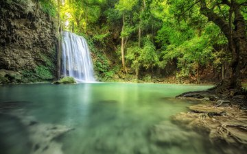 деревья, вода, камни, водопад, водоем, поток, мох