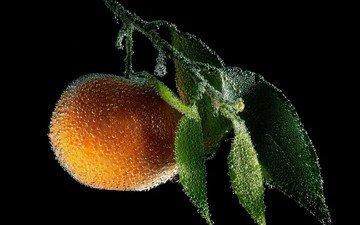 вода, фон, фрукты, оранжевый, апельсин, цитрус, пузырьки, мандарин