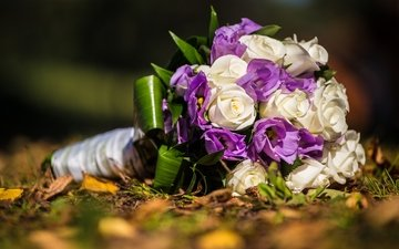 розы, букет, свадьба, венчание, эустома, роз, букеты