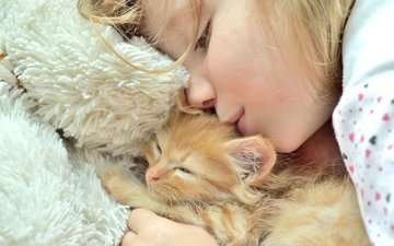 kitty, girl, love, care, friendship
