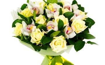 розы, букет, орхидеи, роз, орхидею, букеты