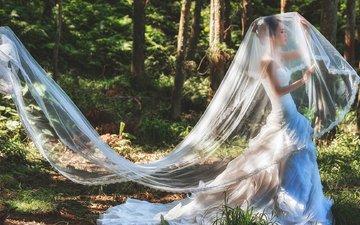 лес, девушка, платье, невесты, азиатка, невеста, фата, в платье