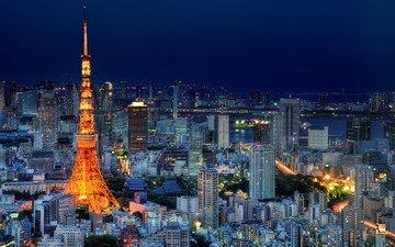 небо, ночь, огни, япония, небоскребы, башня, мегаполис, дома, здания, синее, освещение, японии, токио, столица, токийская башня