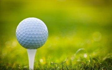 трава, поле, гольф