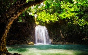 вода, дерево, водопад, поток