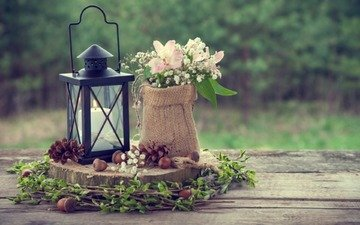 flowers, abstract, lantern, soft