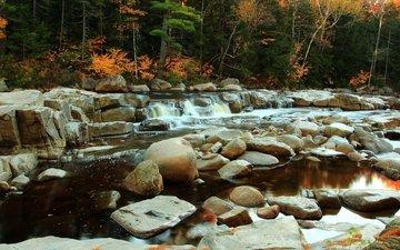 деревья, вода, река, камни, осень, поток, деревь, осен, каменное