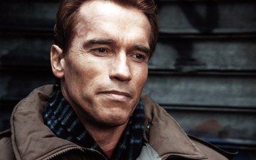 actor, arnold schwarzenegger