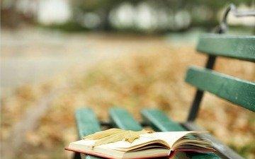 autumn, sheet, bench, leaf, book