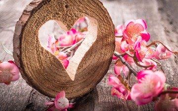 цветы, дерево, стол, сердце, натюрморт, дерева, цветы, сердечка, настольная