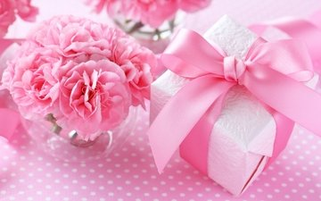 pink, gift, bow, clove, carnations