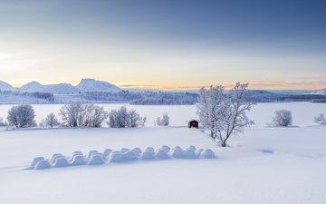 деревья, горы, снег, зима, панорама, сугробы, норвегия, избушка, норвегии, lyngen alps, балсфьорд, тромс