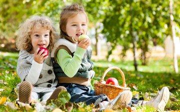 парк, яблоки, осень, дети, девочка, мальчик, друзья, яблок, осен