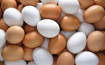 яйца, расцветка, глазунья, куриное мясо