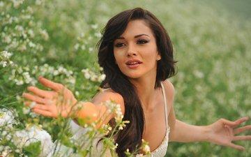 девушка, поза, красавица, губы, актриса, смайл, красива, знаменитост, миленькая, брюнет, хорошенькая, волос, взор, болливуд, gевочка, сексапильная, aктриса, модел, эми джексон