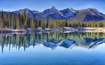 деревья, озеро, горы, отражение, канада, альберта, провинция альберта, канадские скалистые горы, forgetmenot pond, kananaskis country, кананаскис