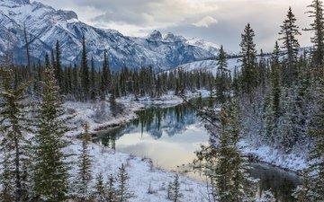 деревья, озеро, горы, лес, зима, канада, альберта, национальный парк джаспер, провинция альберта, канадские скалистые горы