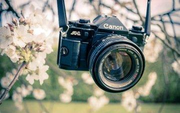 сад, весна, камера, канон